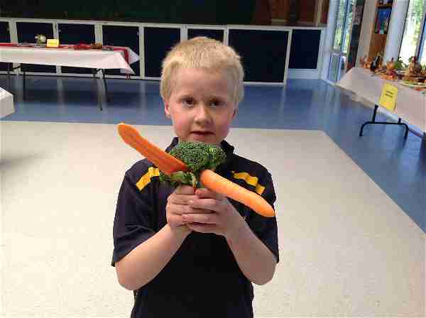 WPS Lucus Room 7 Vegetable opt