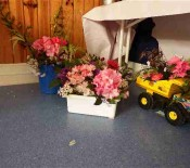 Flowers in a novelty container 2015 1 opt