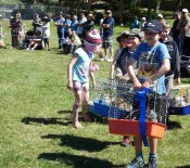 Pet Parade Pet Day 2015 14 opt